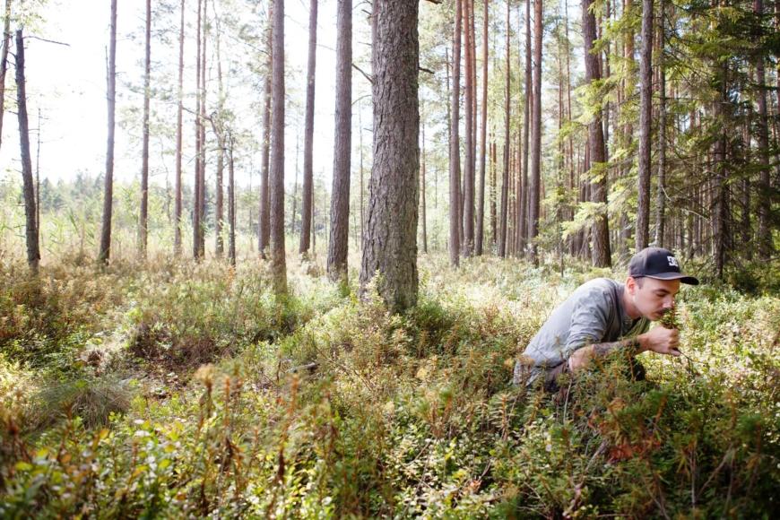 Niki Sjölund sitter på huk i skogen och luktar på skvattram.
