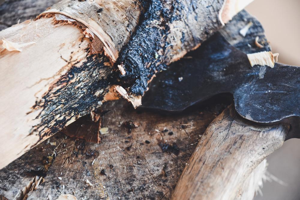 Tälja den brända skogen.