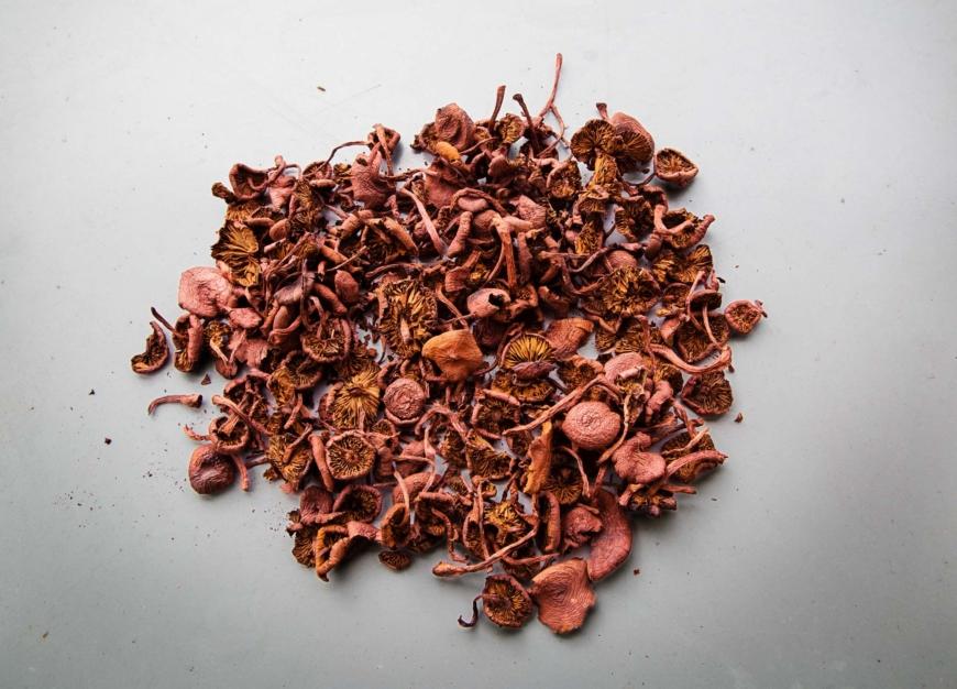 Hög med rosaorange torkad svamp.
