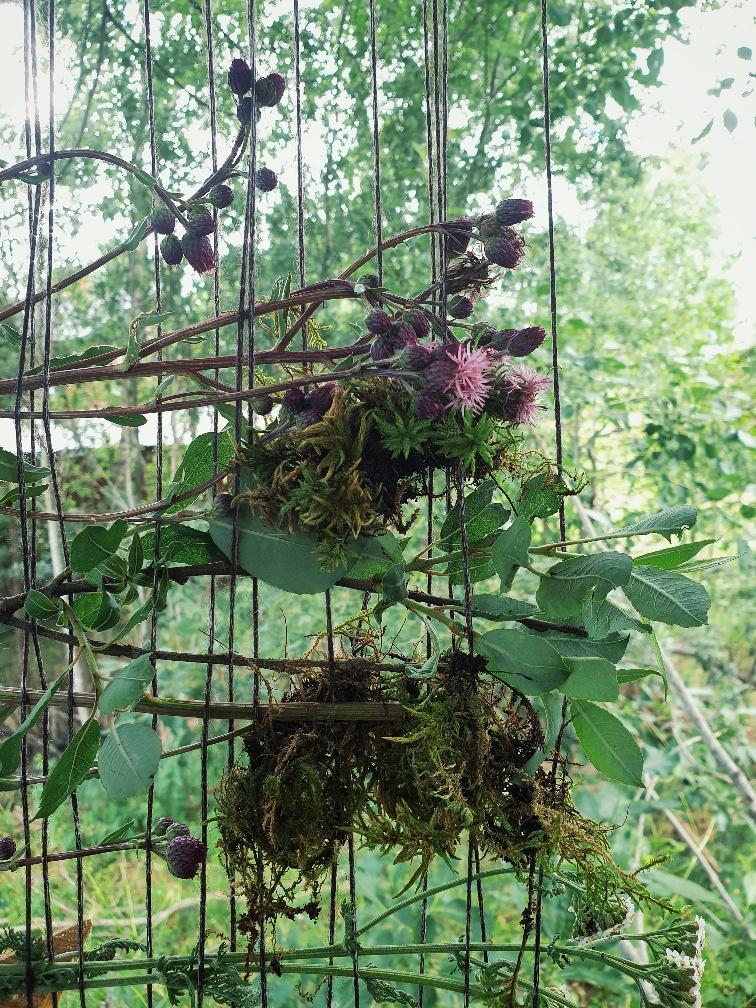 Vävd vägg av växter